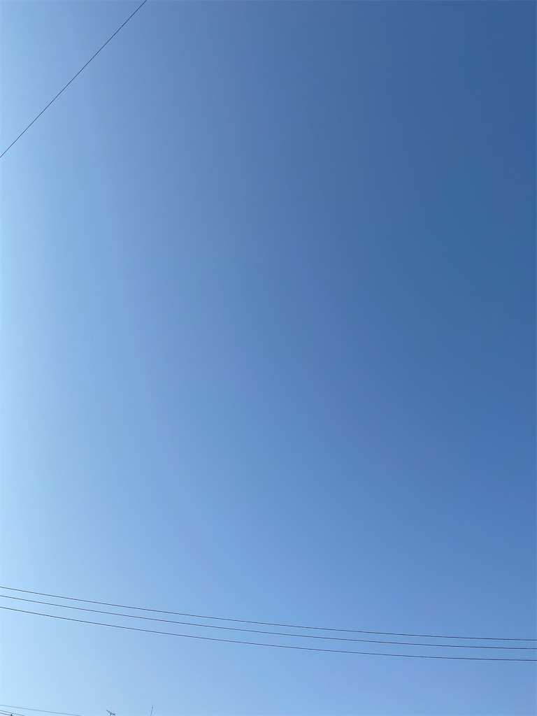 f:id:yanaharamizuho:20210525054249j:image