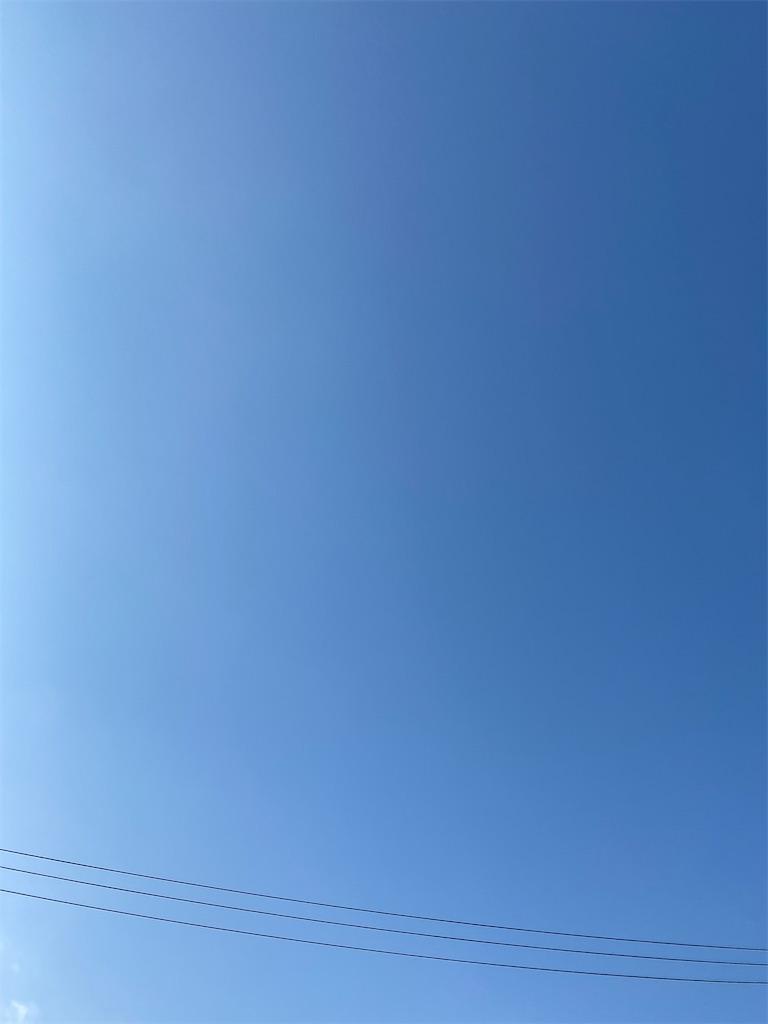 f:id:yanaharamizuho:20210607053318j:image