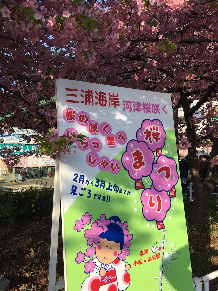 f:id:yanakahachisuke:20180304232602j:image