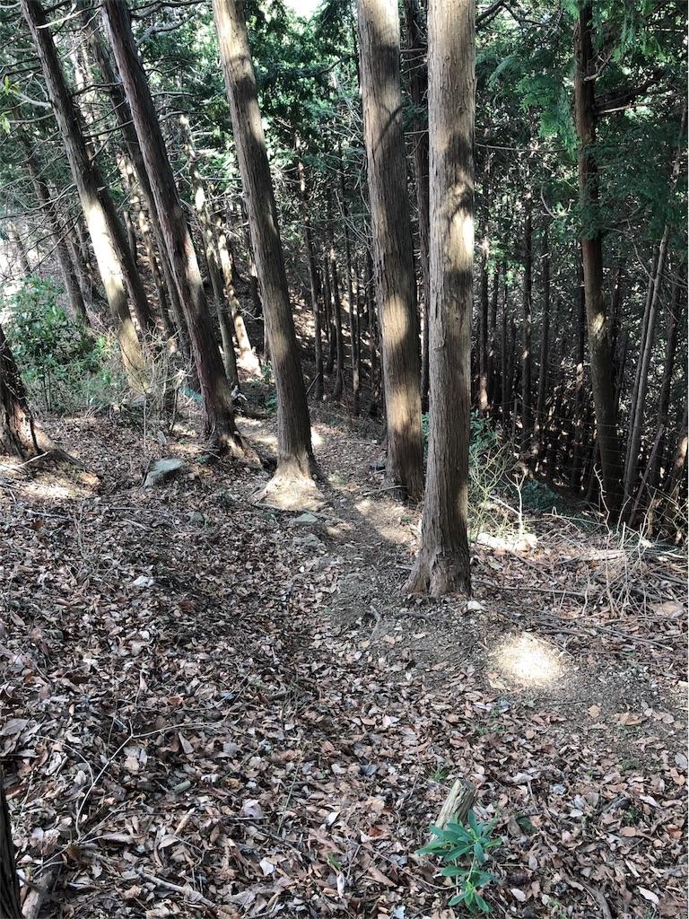 f:id:yanakahachisuke:20180326233959j:image