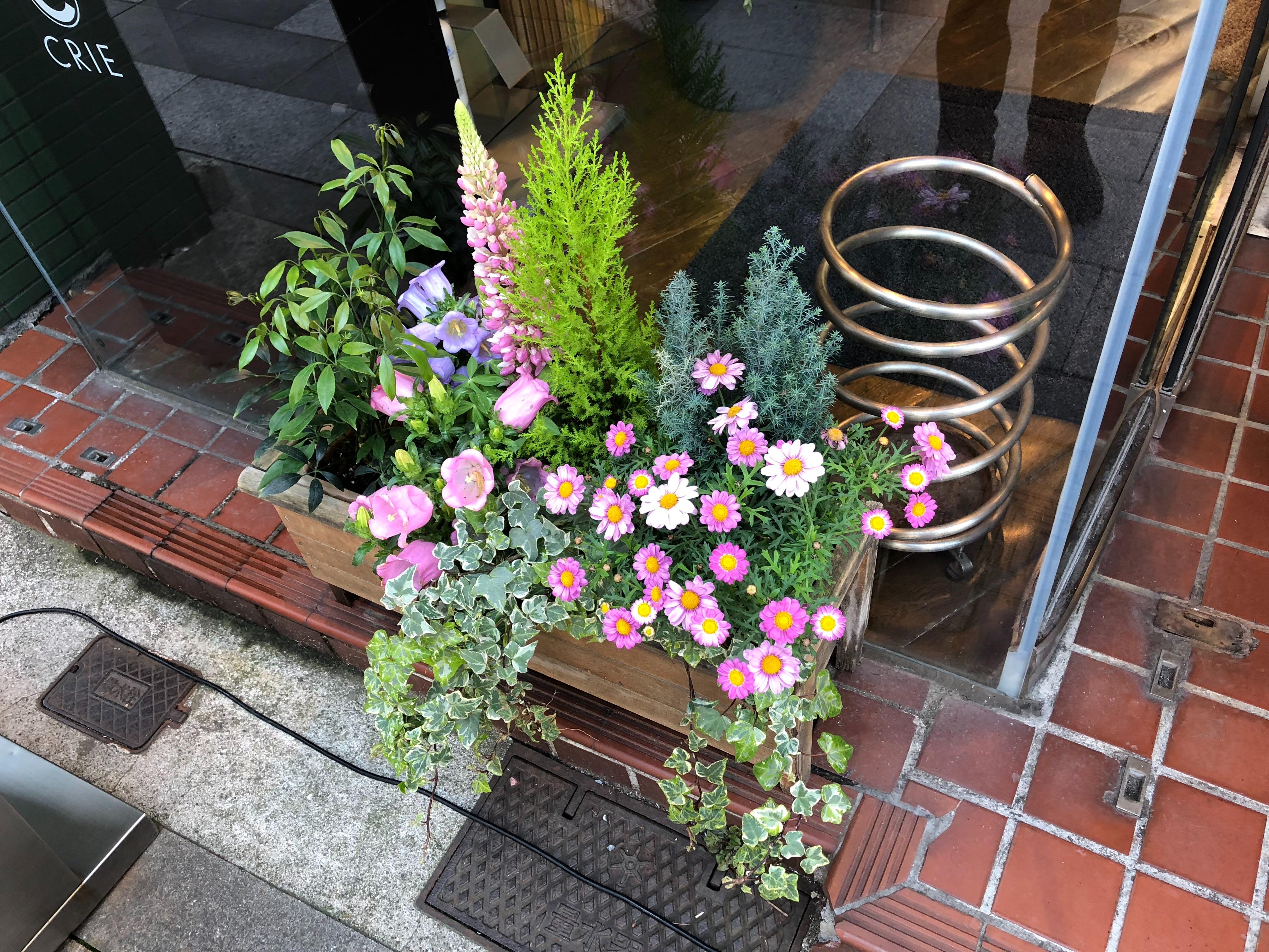 f:id:yanakahachisuke:20180406231638j:image