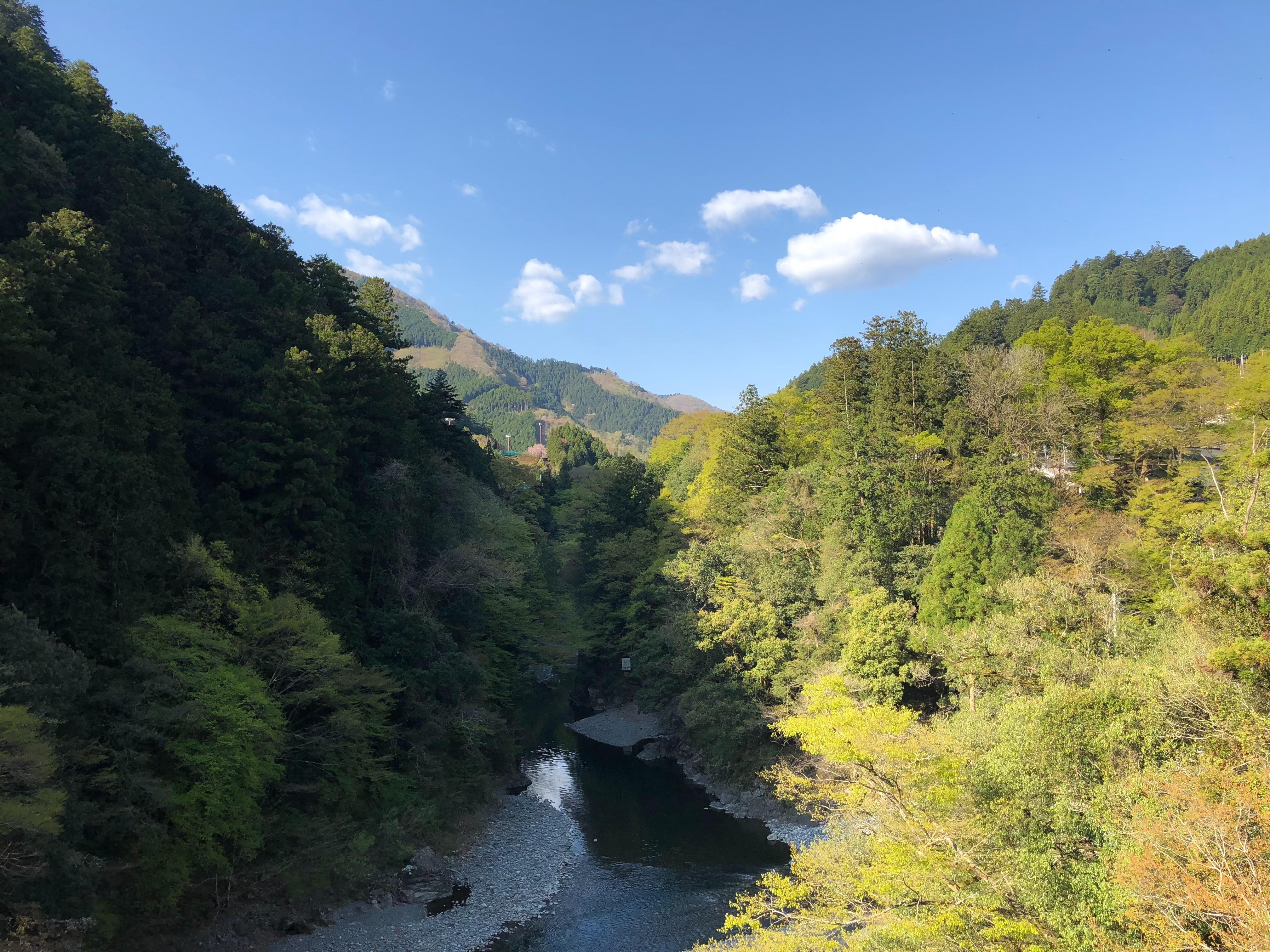 f:id:yanakahachisuke:20180410001352j:image