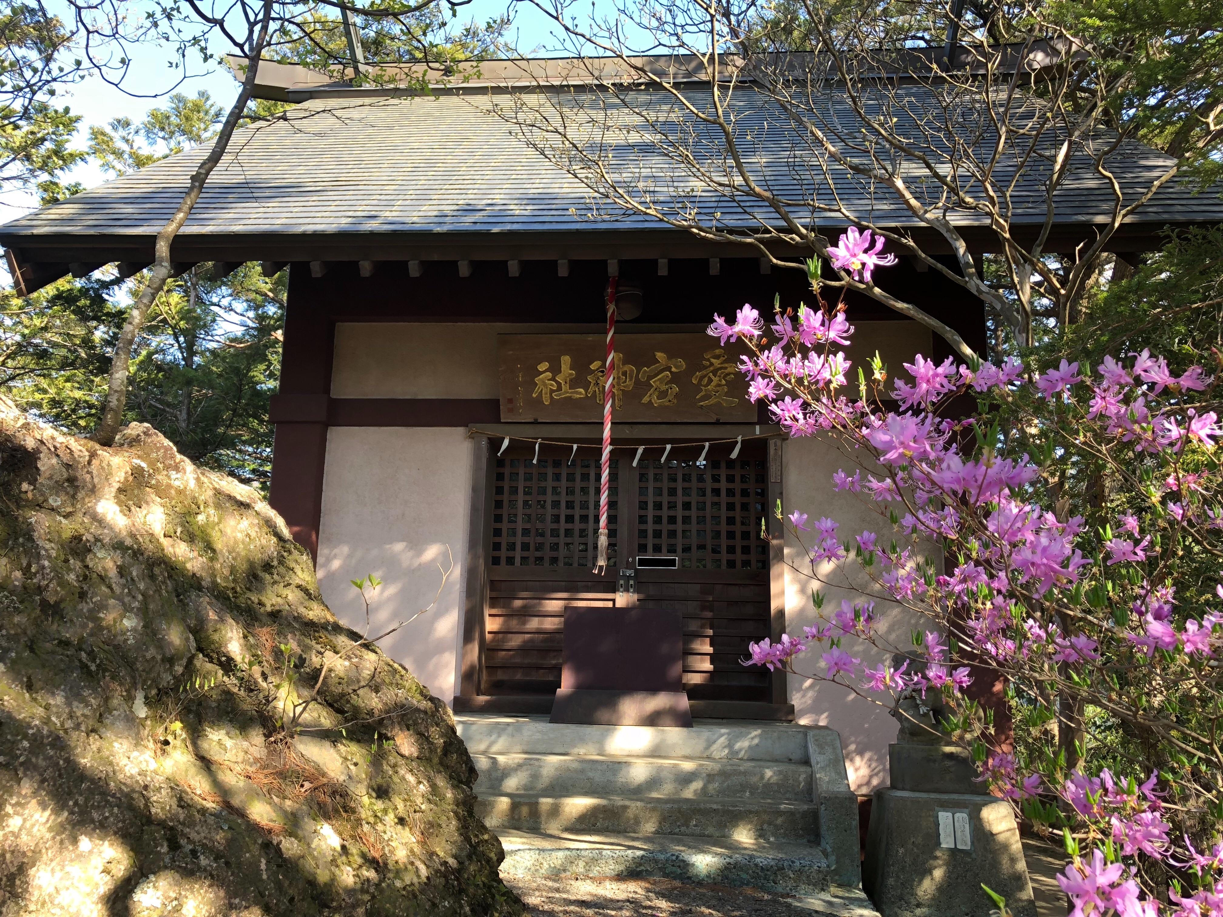 f:id:yanakahachisuke:20180410001547j:image