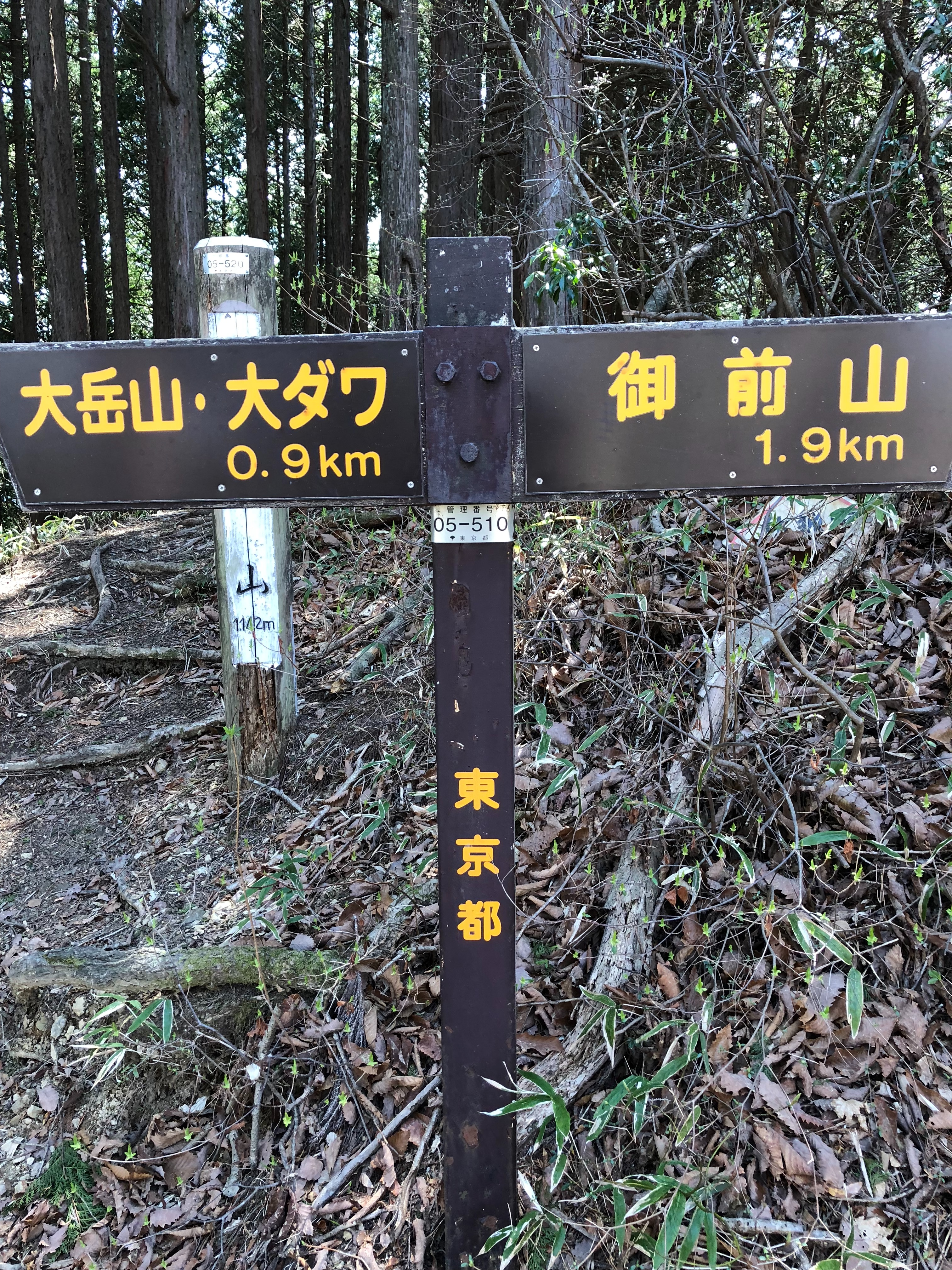 f:id:yanakahachisuke:20180410002119j:image