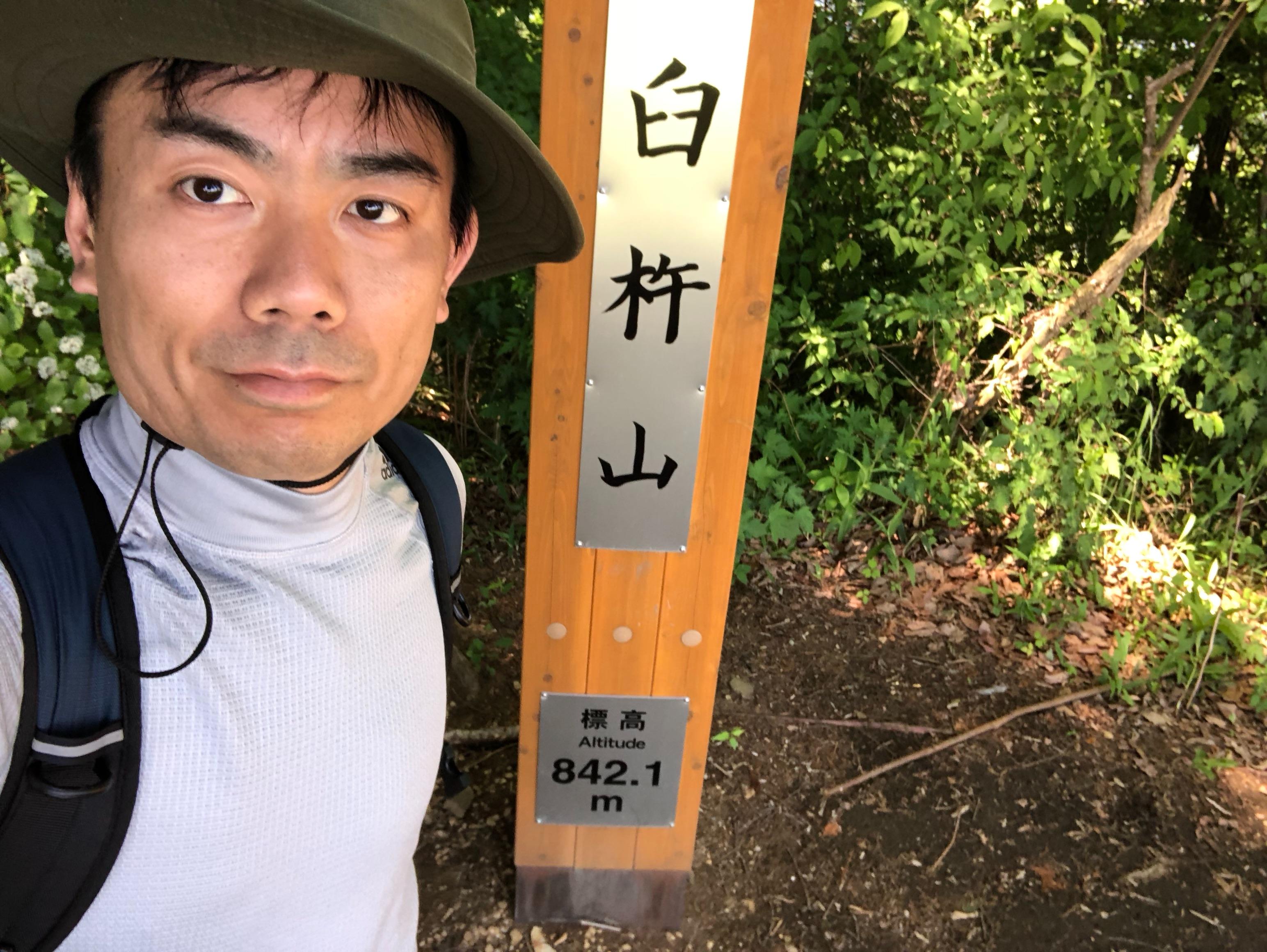 f:id:yanakahachisuke:20180605003645j:image