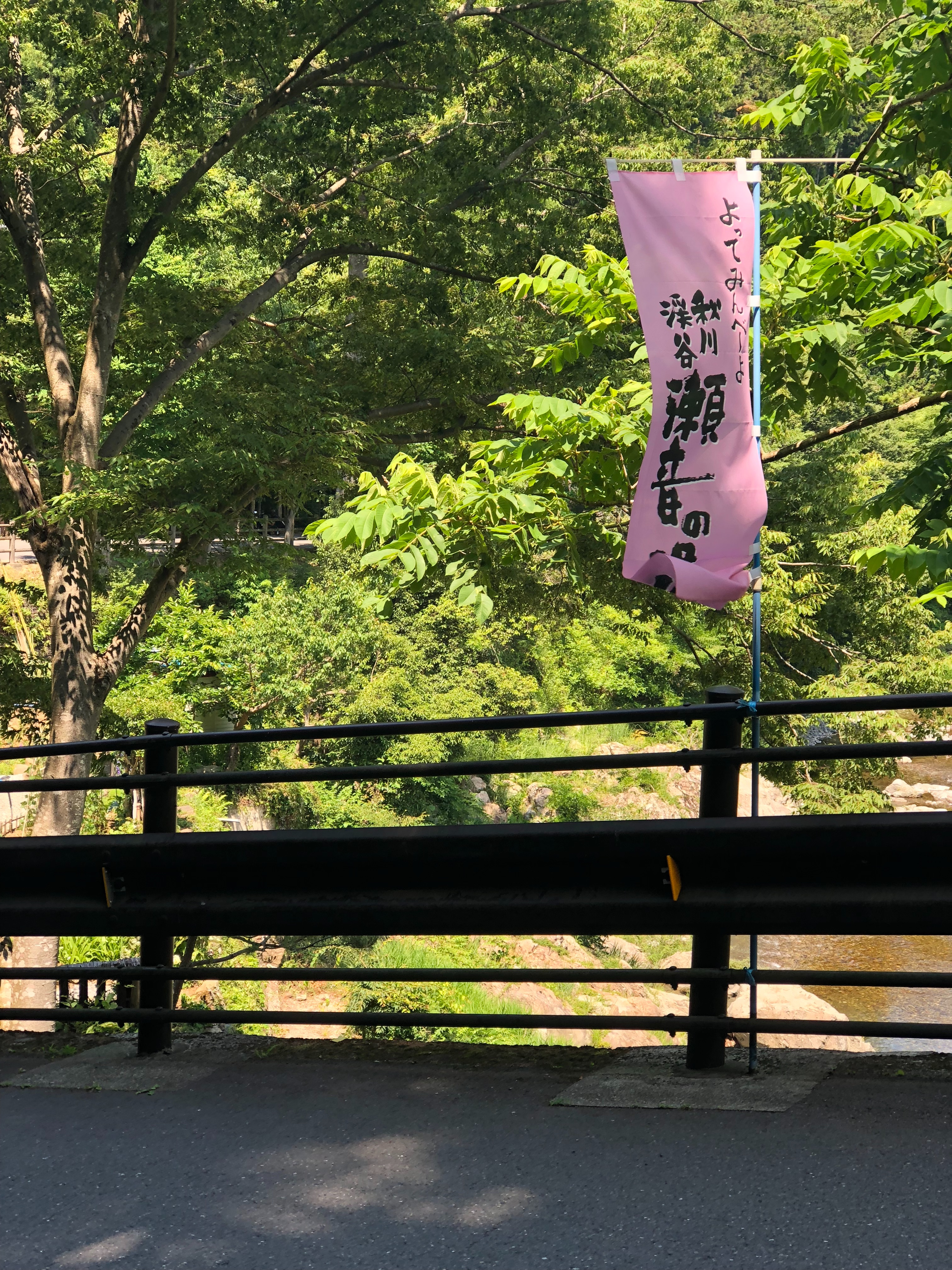 f:id:yanakahachisuke:20180605003905j:image