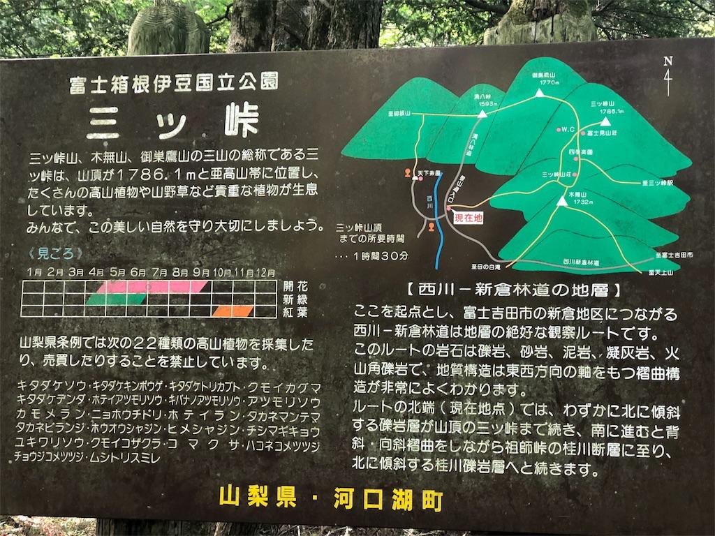 f:id:yanakahachisuke:20180805124220j:image