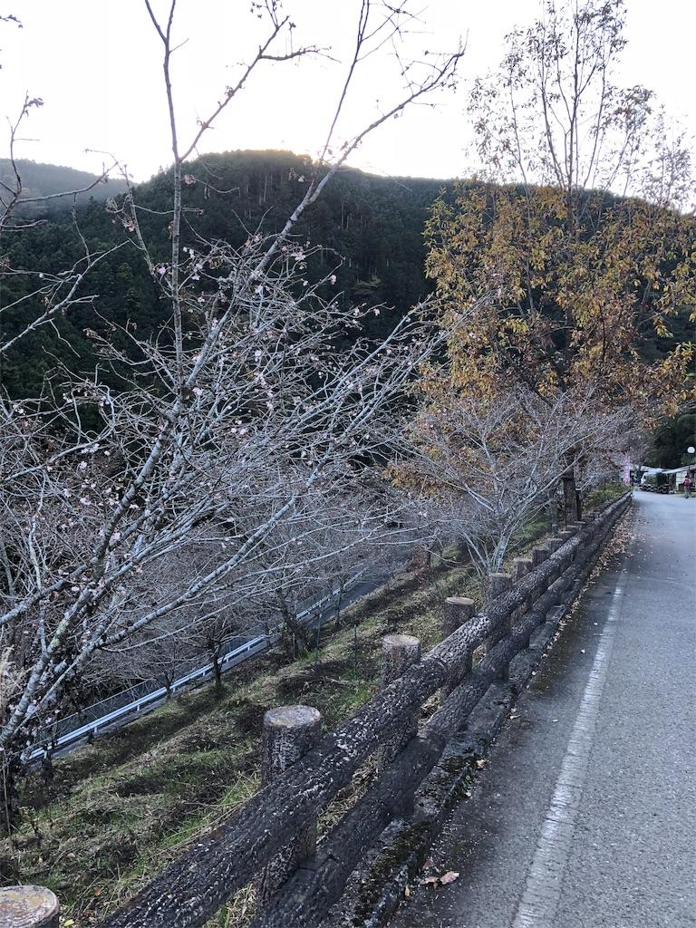 f:id:yanakahachisuke:20181117192552j:image