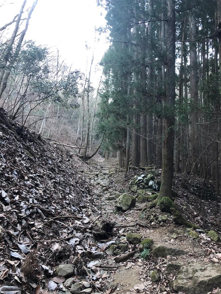 f:id:yanakahachisuke:20190119172746j:image