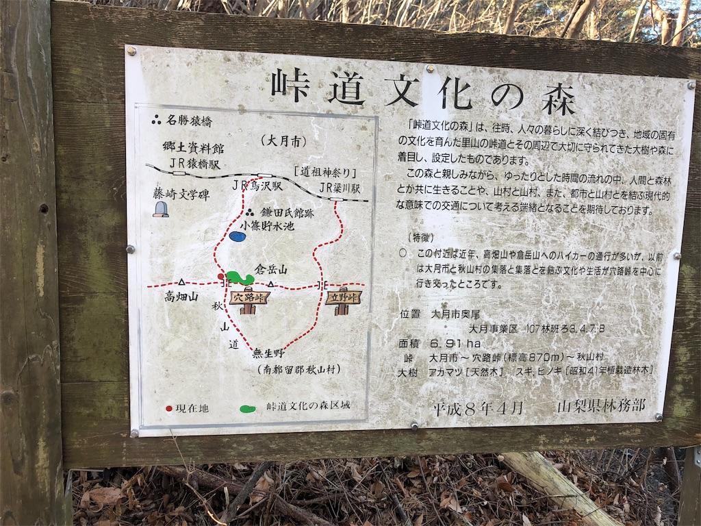 f:id:yanakahachisuke:20190119180818j:image