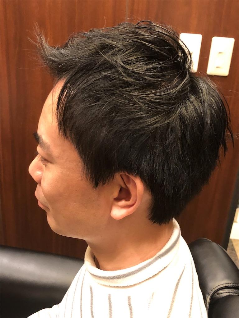 f:id:yanakahachisuke:20190121233433j:image