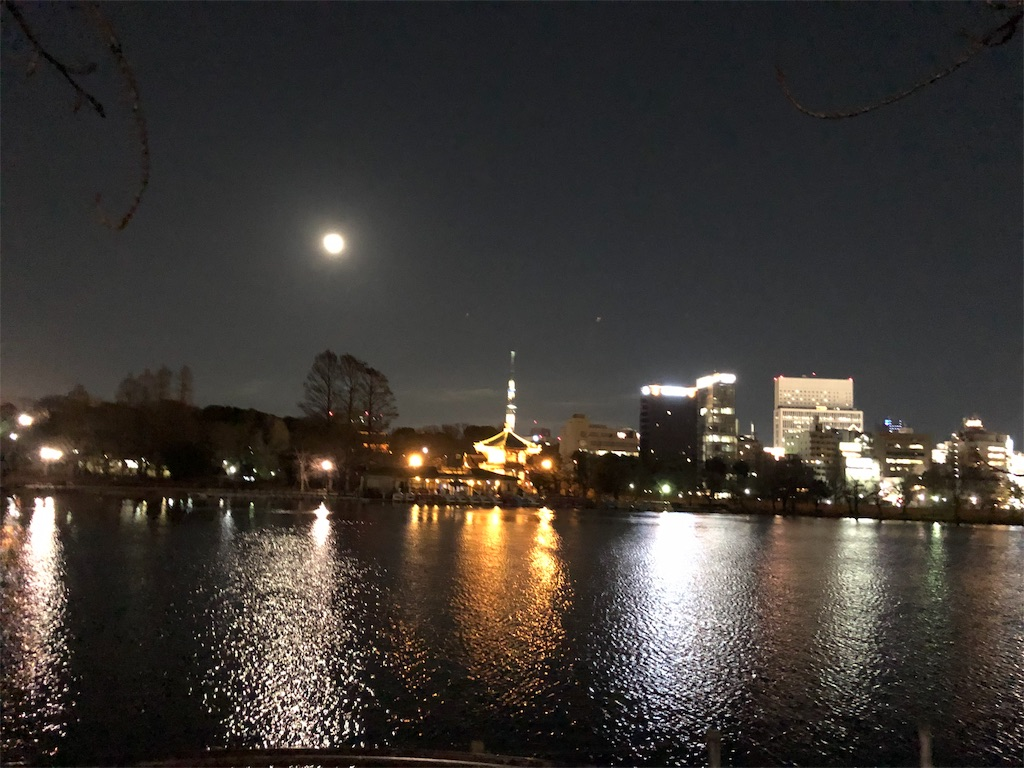 f:id:yanakahachisuke:20190124175031j:image