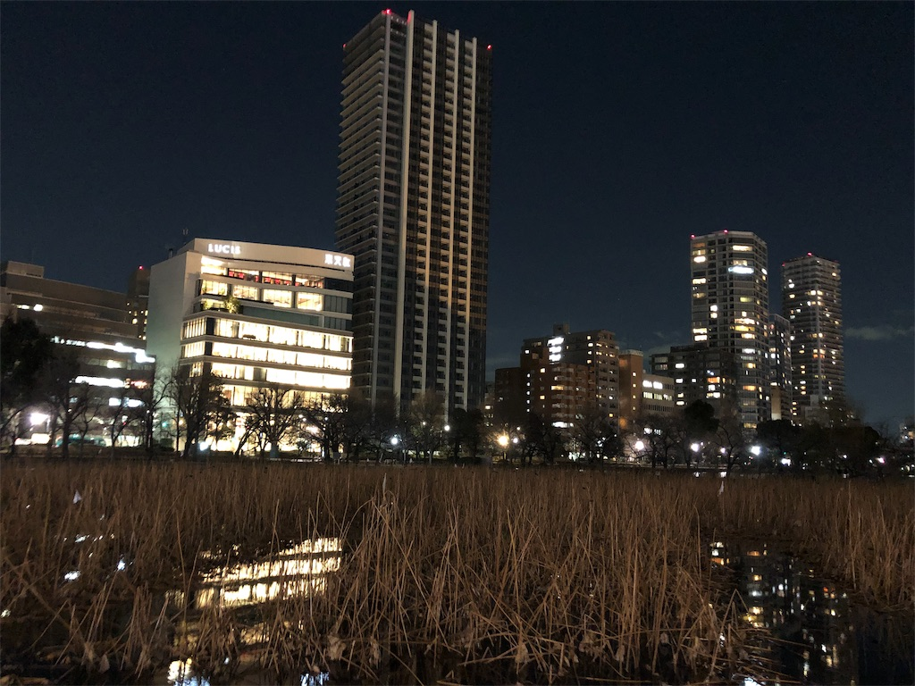 f:id:yanakahachisuke:20190124175307j:image