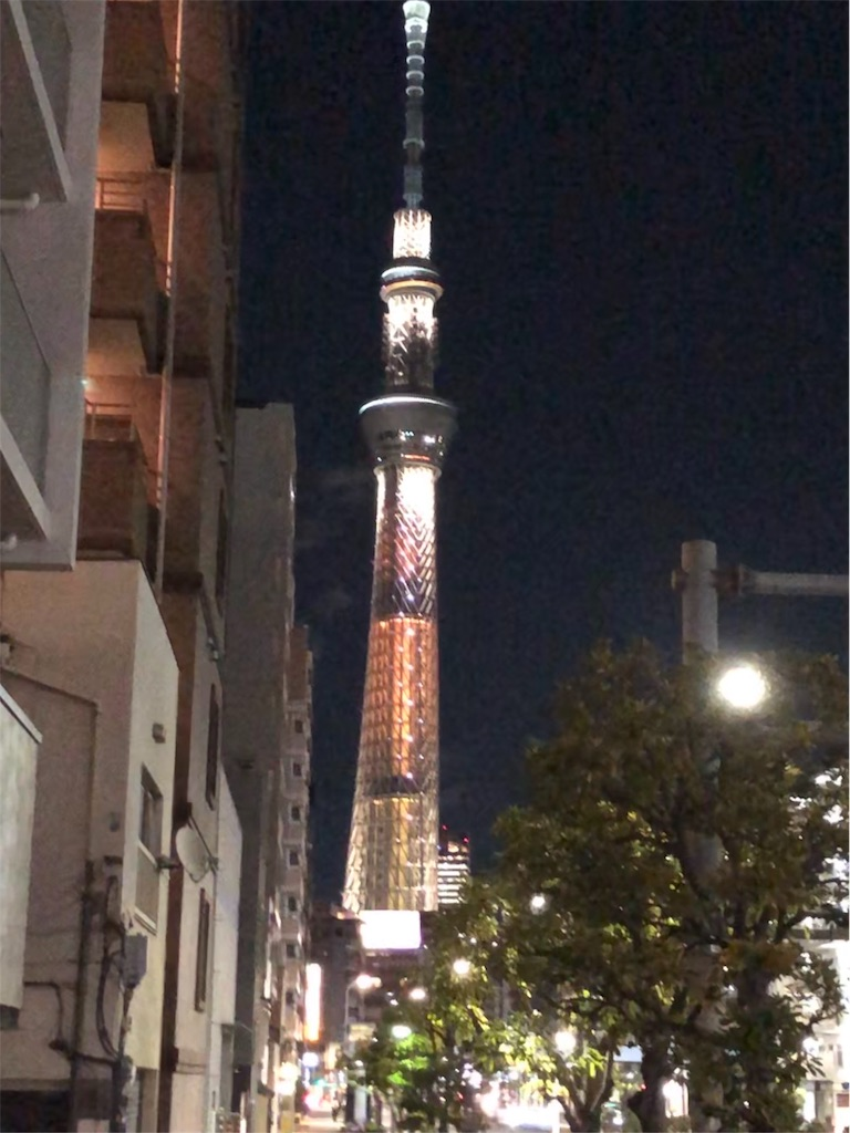 f:id:yanakahachisuke:20190129180250j:image
