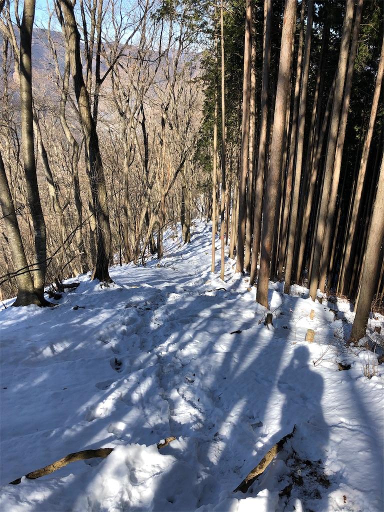 f:id:yanakahachisuke:20190202180943j:image