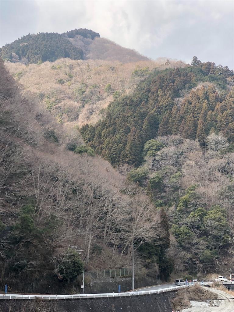 f:id:yanakahachisuke:20190302191426j:image