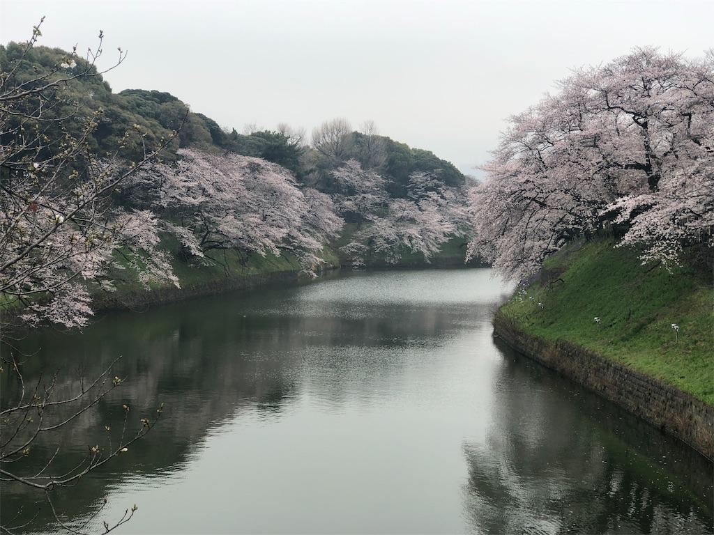 f:id:yanakahachisuke:20190331174204j:image