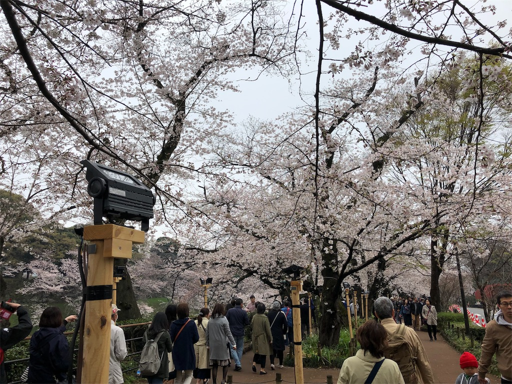 f:id:yanakahachisuke:20190331174923j:image