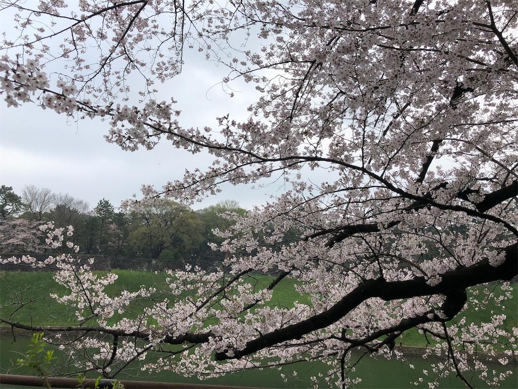 f:id:yanakahachisuke:20190331180657j:image
