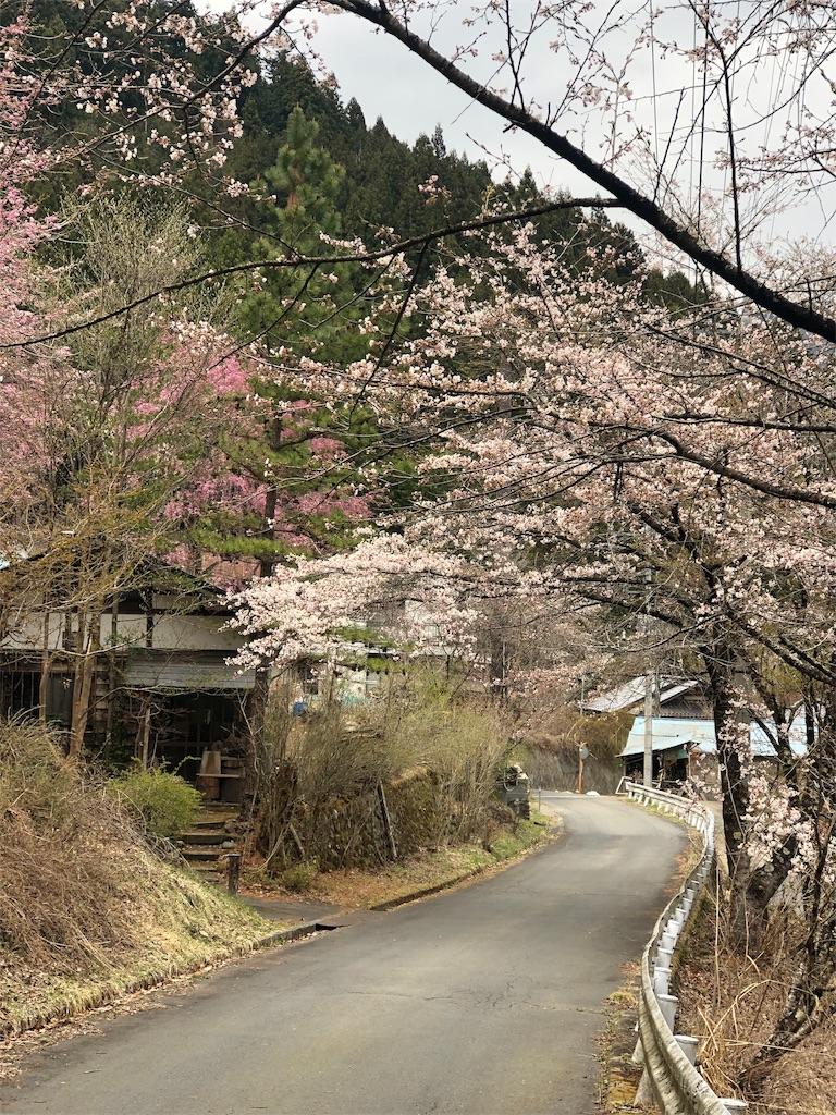 f:id:yanakahachisuke:20190414190150j:image