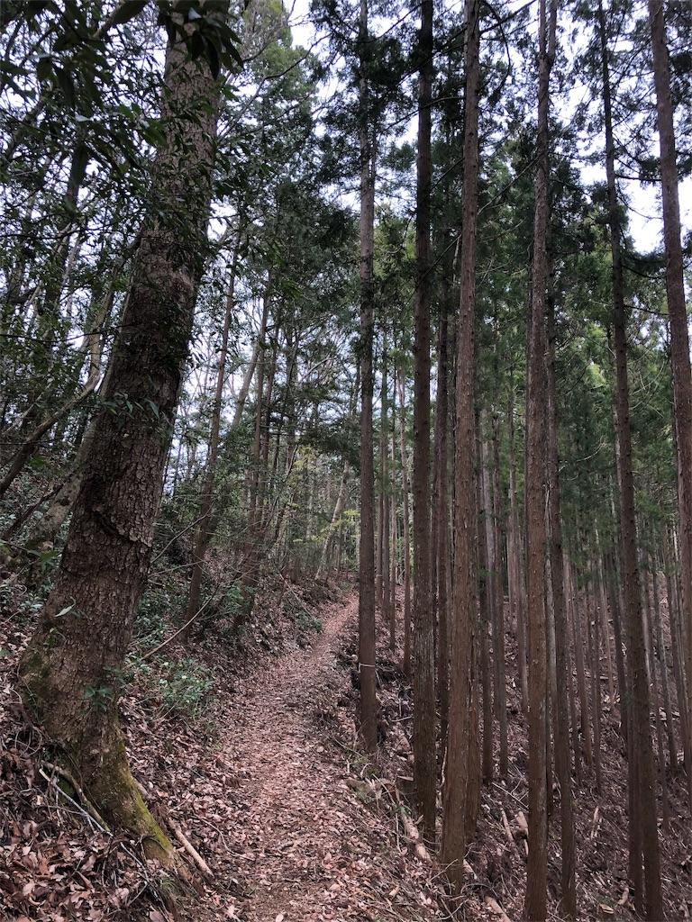 f:id:yanakahachisuke:20190414190438j:image