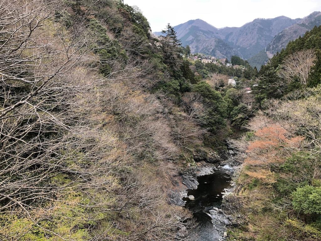 f:id:yanakahachisuke:20190414195255j:image