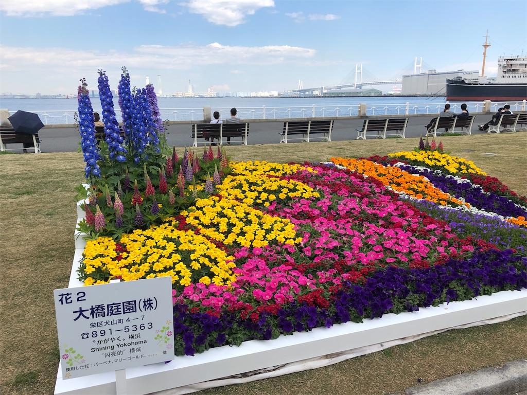 f:id:yanakahachisuke:20190415175029j:image