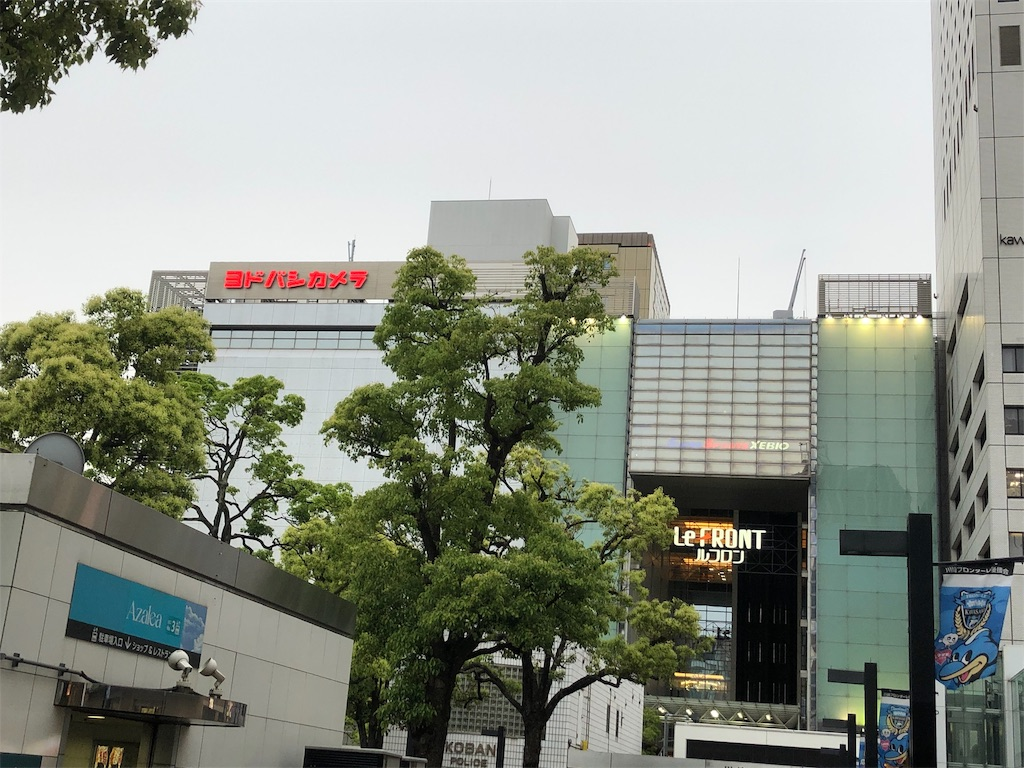 f:id:yanakahachisuke:20190514193339j:image