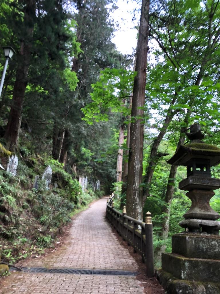 f:id:yanakahachisuke:20190518172202j:image