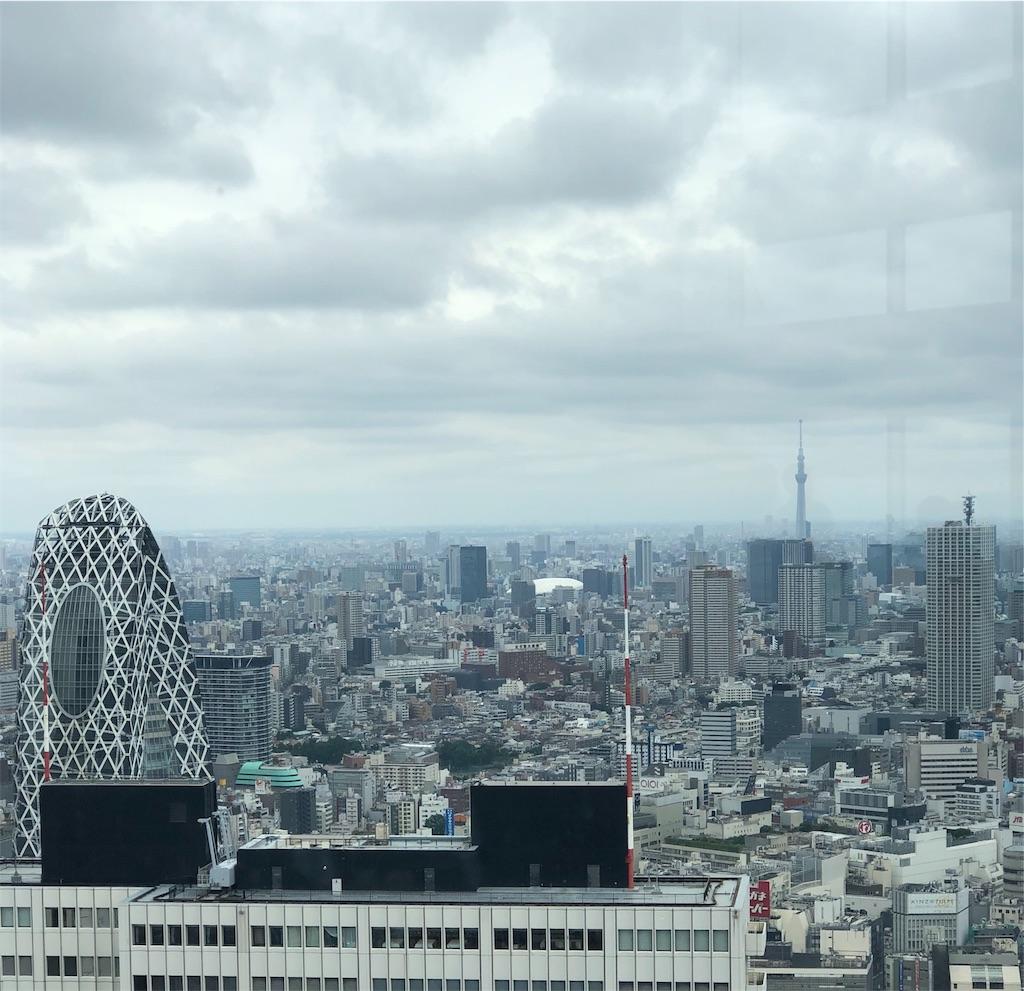 f:id:yanakahachisuke:20190610180745j:image
