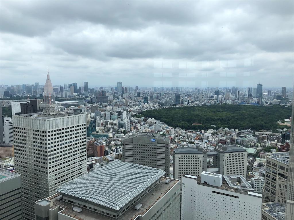 f:id:yanakahachisuke:20190610215433j:image