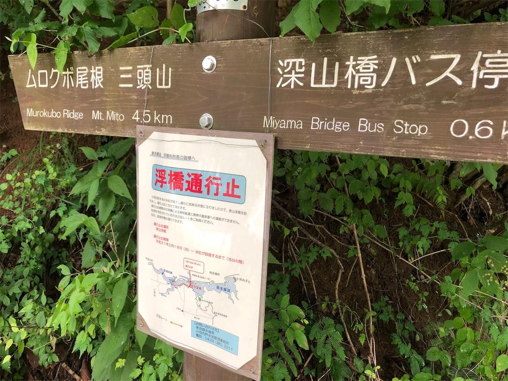 f:id:yanakahachisuke:20190623164502j:image