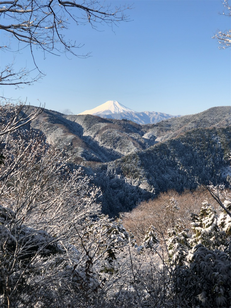 f:id:yanakahachisuke:20200119212556j:image