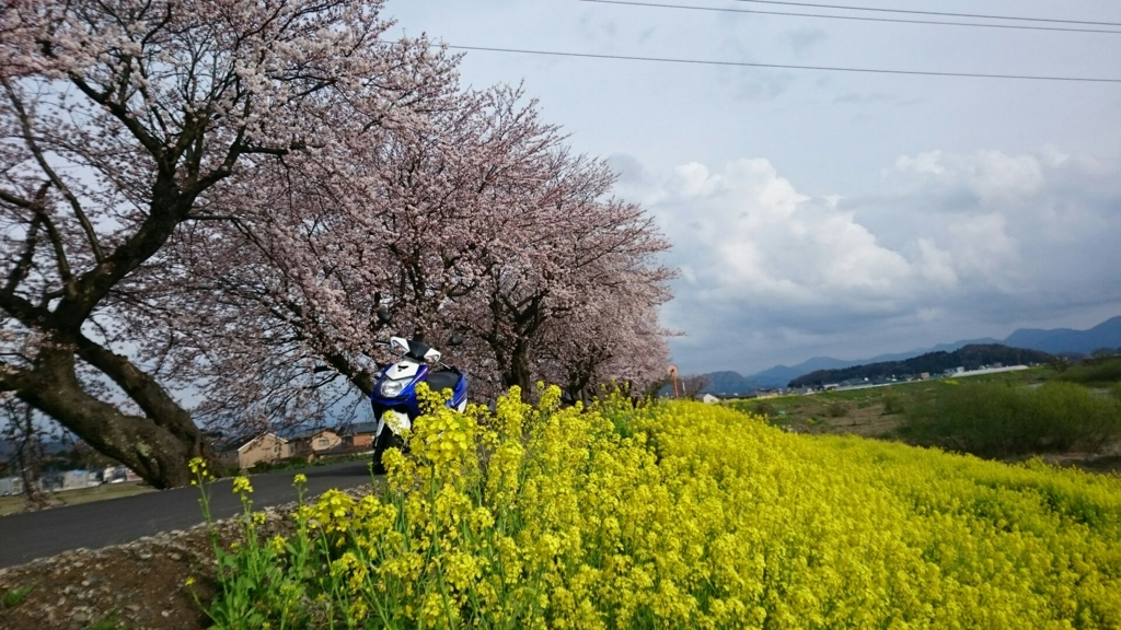 f:id:yanchiyamaru:20170409232043j:plain