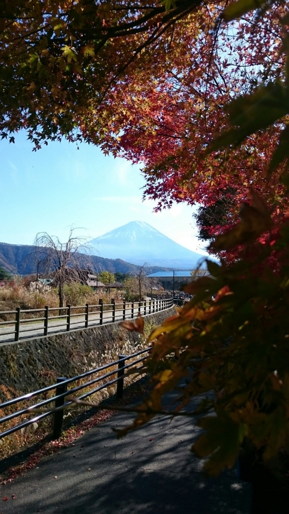 f:id:yanchiyamaru:20171115214325j:plain