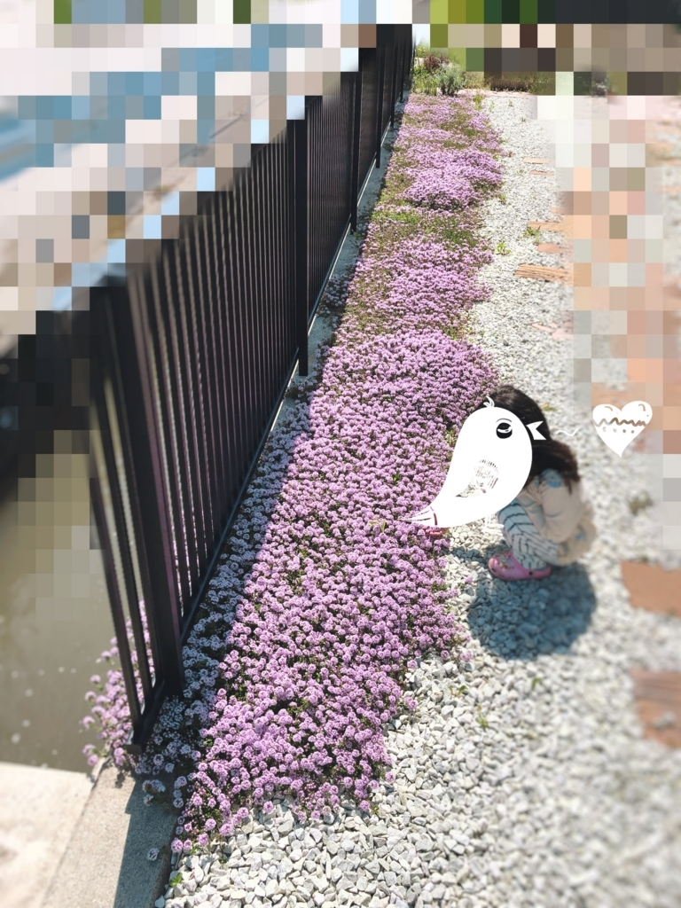 f:id:yanebon:20180503204616j:plain
