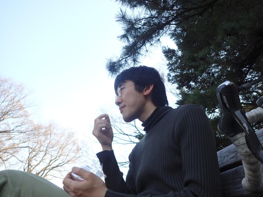 f:id:yanenouenomushi:20170405021145j:plain