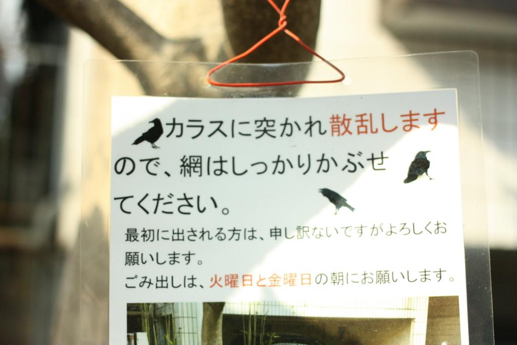 f:id:yanenouenomushi:20170405022727j:plain