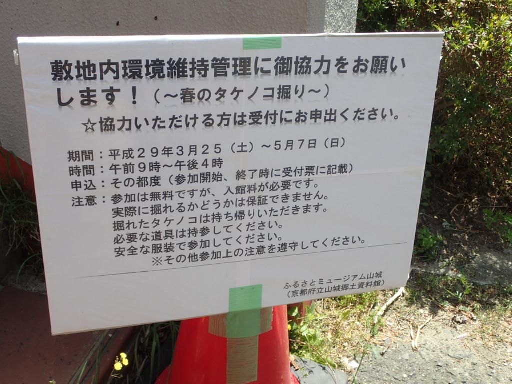 f:id:yanenouenomushi:20170504035525j:plain