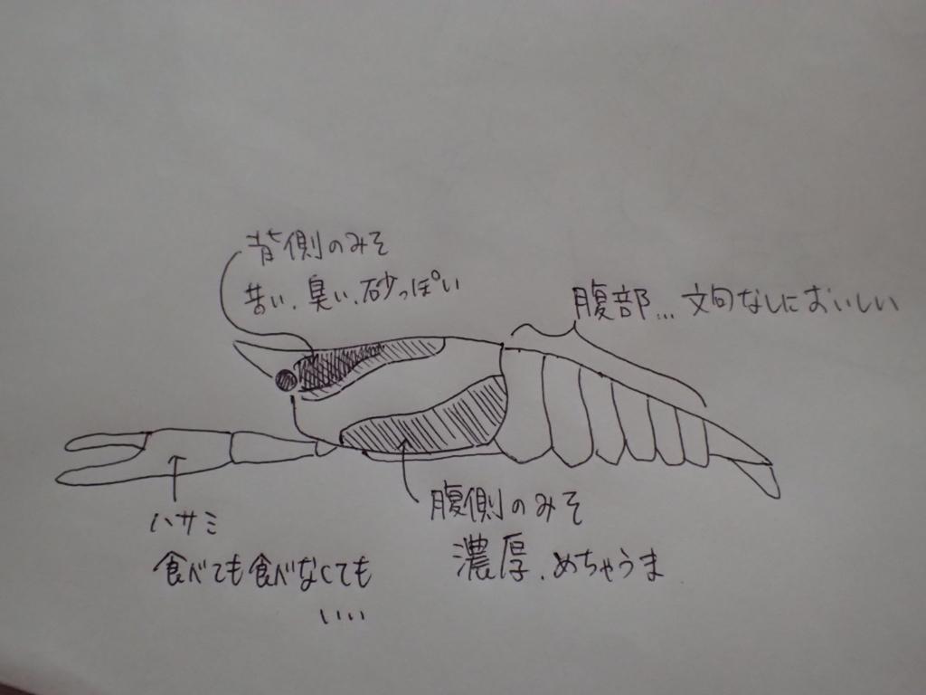 f:id:yanenouenomushi:20170720063458j:plain