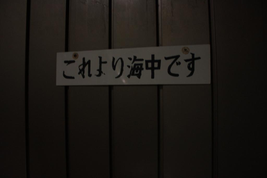 f:id:yanenouenomushi:20170804013920j:plain