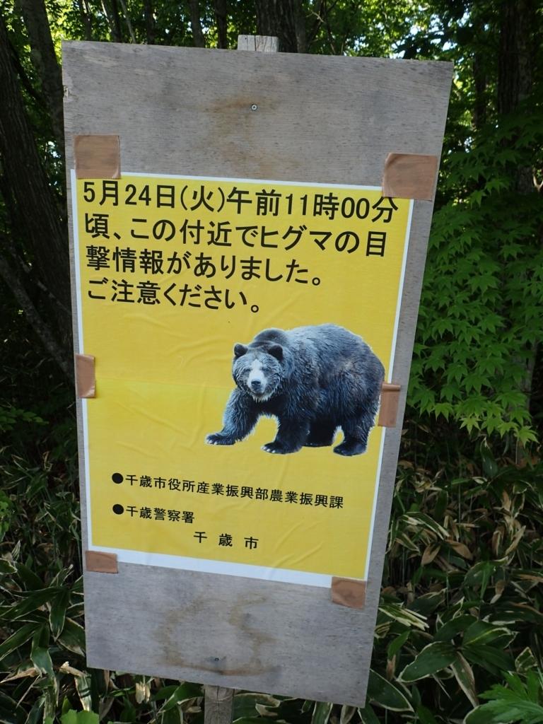 f:id:yanenouenomushi:20170822201821j:plain