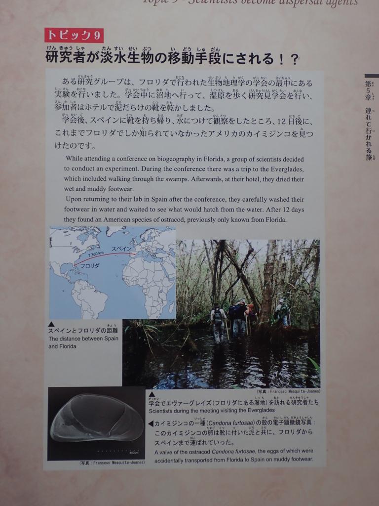 f:id:yanenouenomushi:20170902044252j:plain