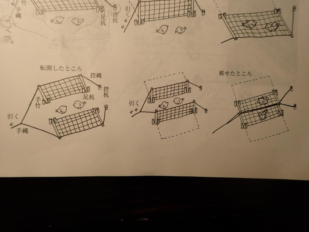 f:id:yanenouenomushi:20180606200623j:plain