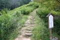 近道の山道