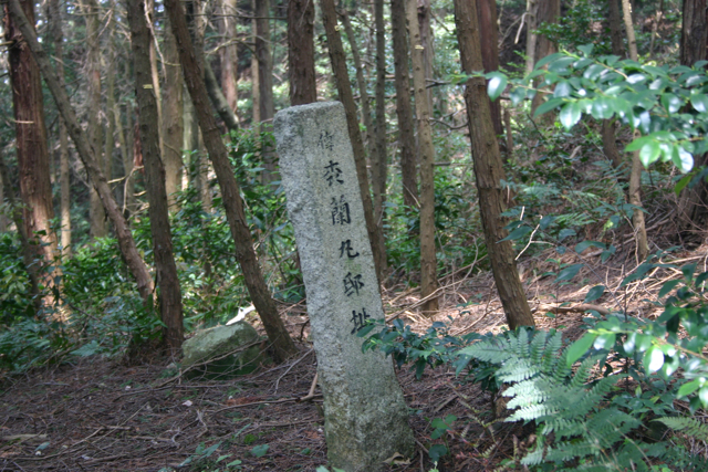 f:id:yaneshin:20100504125219j:plain:w160