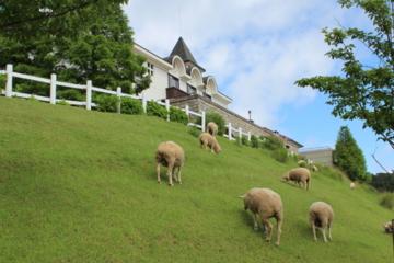 f:id:yaneshin:20110625145439j:plain