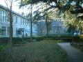 旧制松本高校中庭