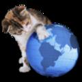 IRcat