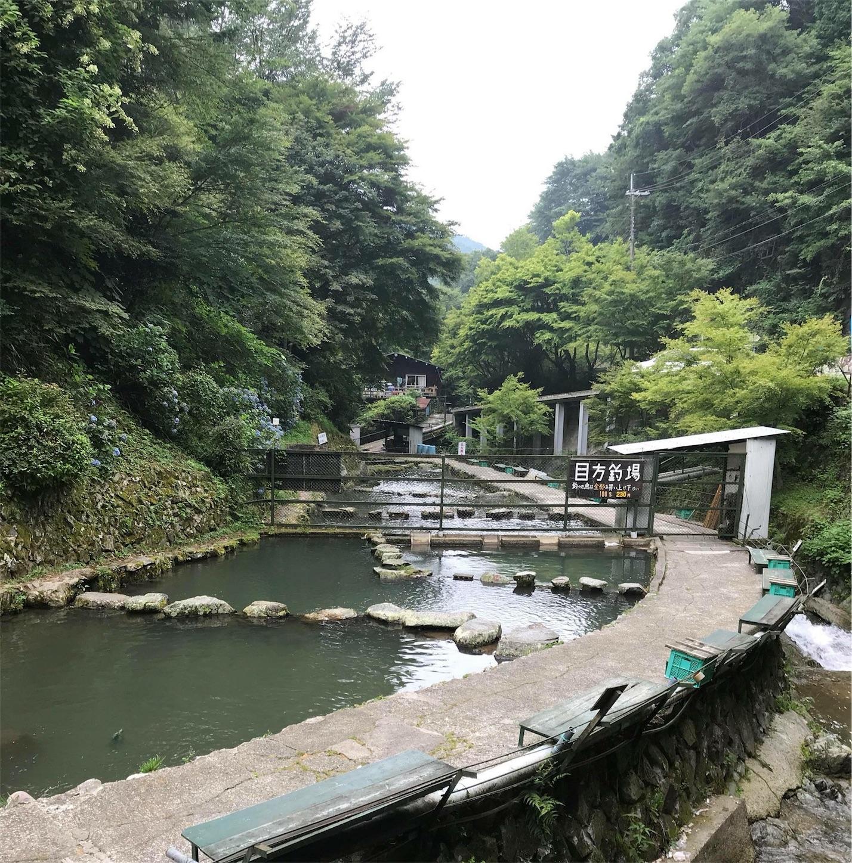 千早川マス釣り場2